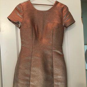 Express Gold puff sleeve mini dress sz 2